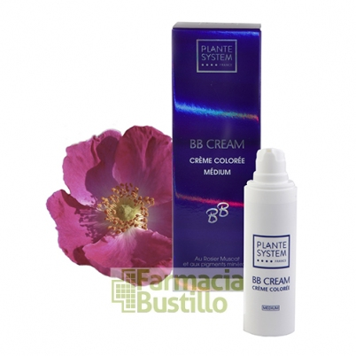 PLANTE SYSTEM BB CREAM  30ml